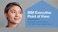 IBM Executive Point of View